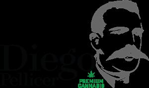 diego-pellicer-new-logo