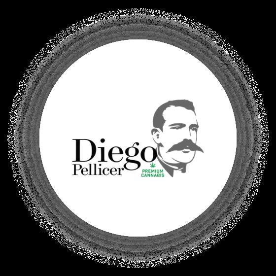 Logo Diego Pellicer